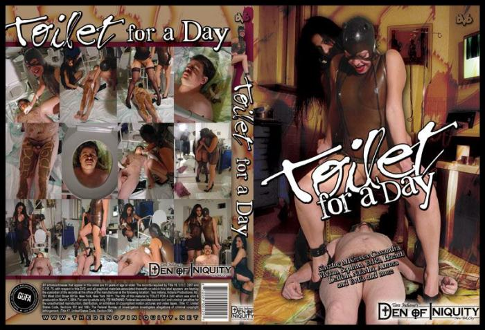 Femdom Scat: (ScatGirls) - Toilet For A Day [DVDRip] (302 MB)
