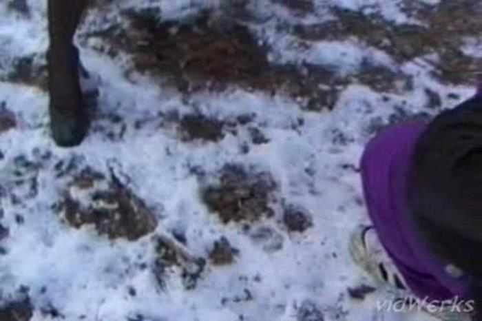 SG Video: (Fanny Steel) - Piss In The Snow Wood [SD] (18.2 MB)