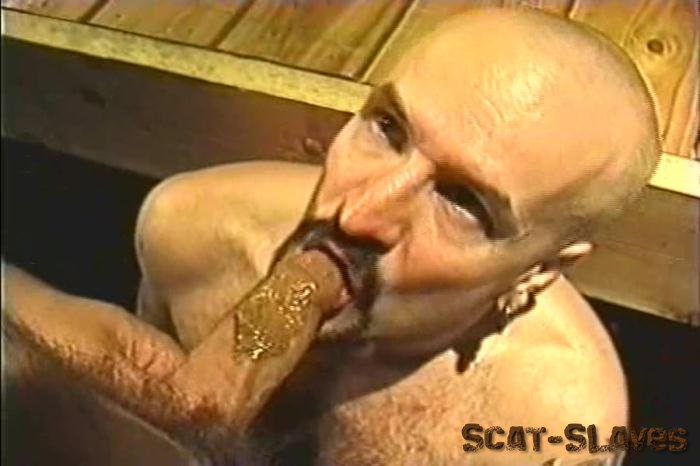 Gay Porn Scat: (Pig Sty) - Third World Video [DVDRip] (567 MB)