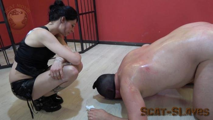 Domination Scat: (scat-movie-world) - Miss Jane trains her dog [FullHD 1080p] (866 MB)