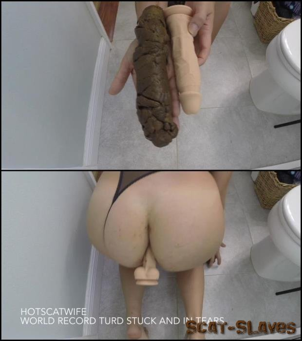 Copro - Woman defecates very large hard turd – this world record. [Scatting, スカトロ - FullHD 1080p] (1.09 GB)