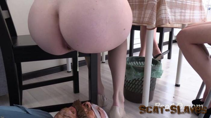 Femdom Scat: (MilanaSmelly) - Tea and Chocolate for the toilet slave [FullHD 1080p] (1.11 GB)