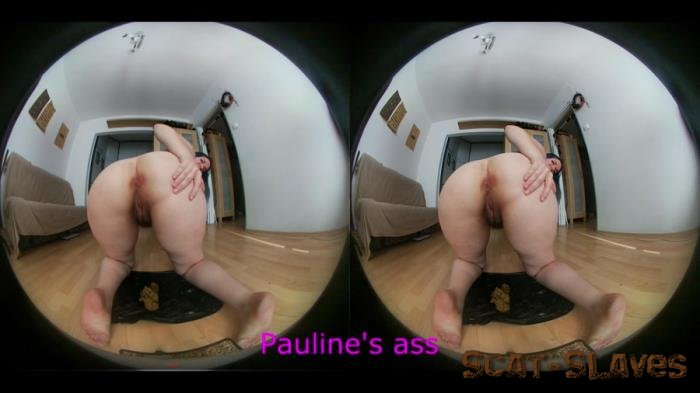 New scat: (PaulieMaxx) - 2 version of shit include VR [HD 720p] (407 MB)