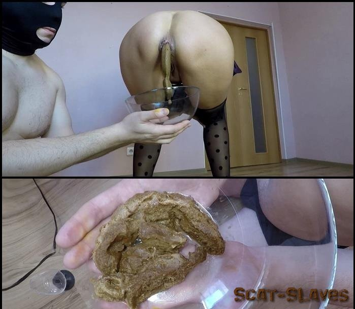Toilet Slavery: (Scatdesire) - Special Treat for My Toilet [FullHD 1080p] (899 MB)