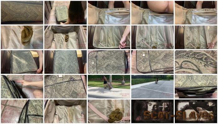 New scat: (Marinayam19) - Shit in suitcase, dragged around town! [FullHD 1080p] (1.01 GB)